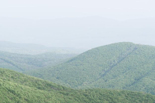 Paysage de printemps minimaliste simple dans des couleurs pastel vert clair et brume dans les montagnes