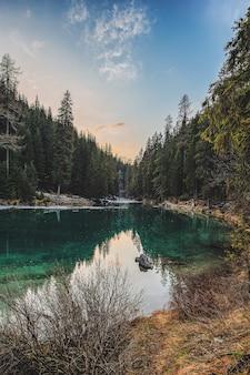 Paysage de riverand pine trees
