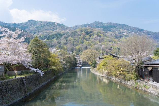 Le paysage de la rivière katsura avec des cerisiers en fleurs et fond de ciel bleu