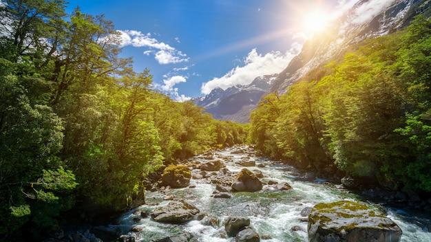 Paysage de rivière rocheuse dans la forêt tropicale de milford sound, nouvelle-zélande