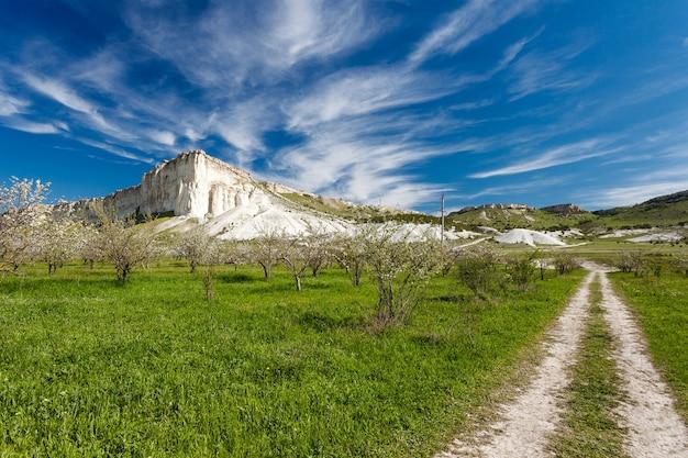 Paysage, rocher sur le terrain, chemin de terre, herbe verte