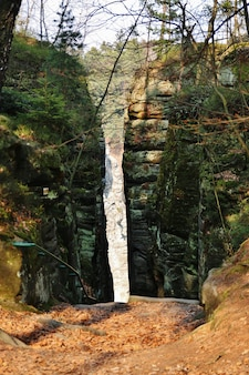 Paysage avec des rochers de grès