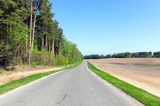 Paysage en route asphaltée d'été