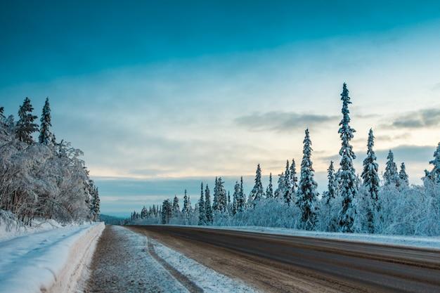 Paysage avec route d'hiver