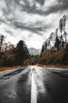 Paysage de route de montagne