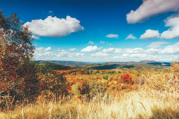 Paysage rural d'automne coloré et ciel bleu avec des cumulus