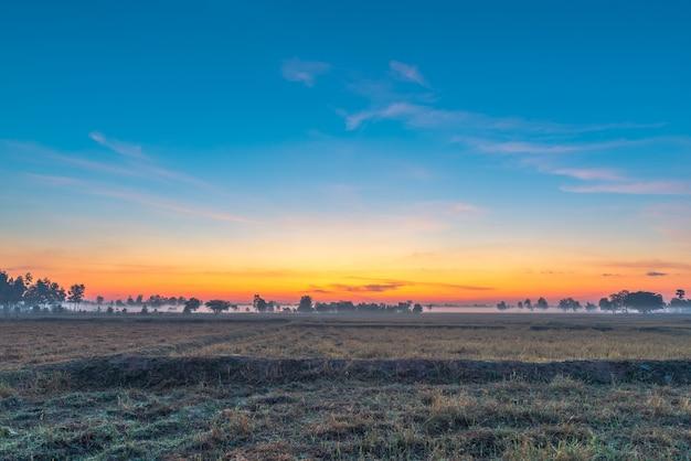 Paysage rural les champs au lever du soleil matin brouillard et beau ciel.