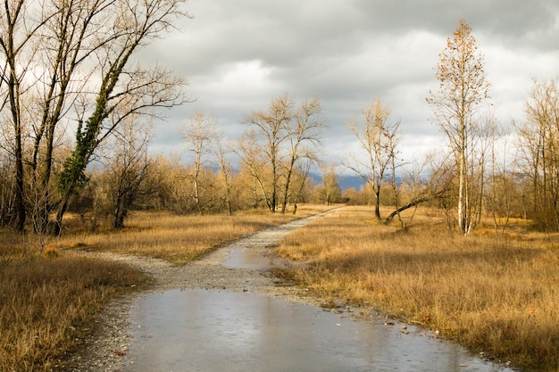 Paysage rural, chemin de terre à travers le panorama de la campagne