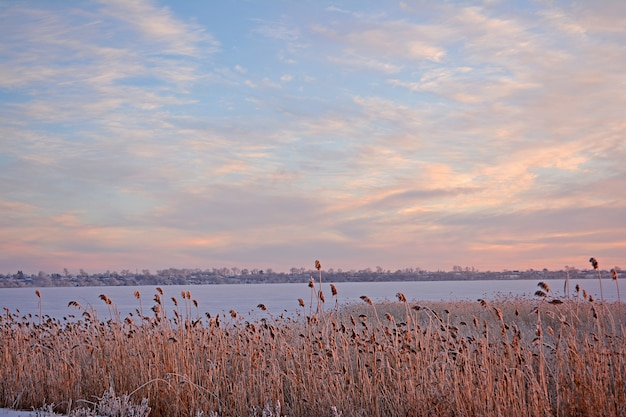 Paysage rural d'hiver. lac en hiver.