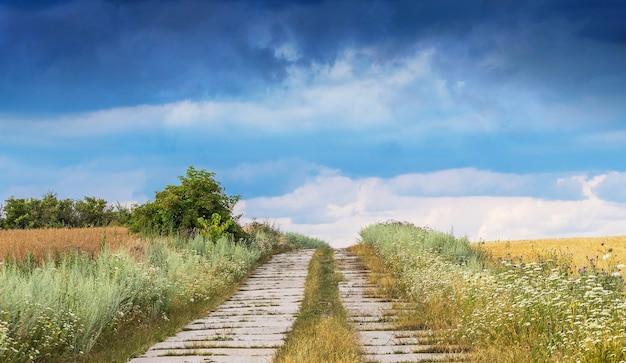 Un paysage rural pittoresque avec une route au milieu d'un champ