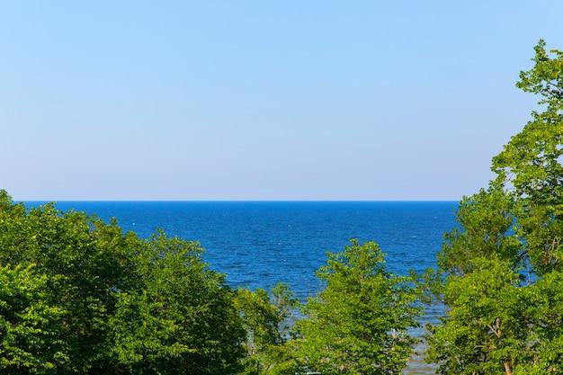 Paysage de la skyline de la mer. horizon de l'eau. arbres au bord de la mer