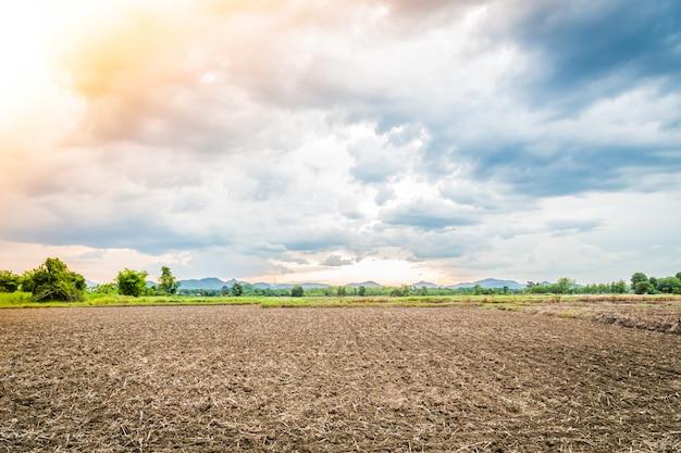 Paysage de terrain cultivé