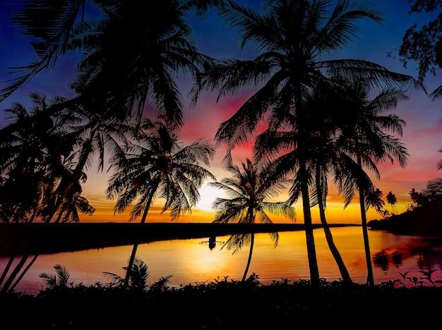 Paysage tropical avec ciel coloré et silhouette de palmier