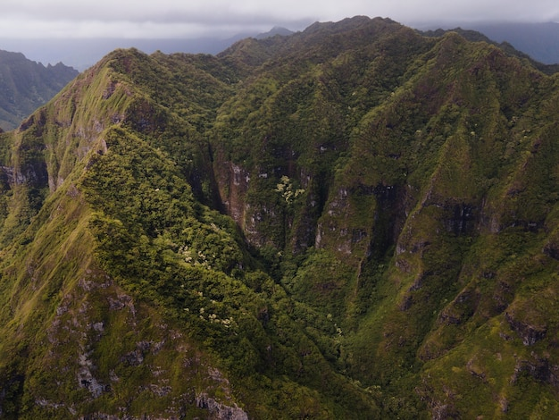 Paysage tropical d'hawaï avec vue sur la montagne