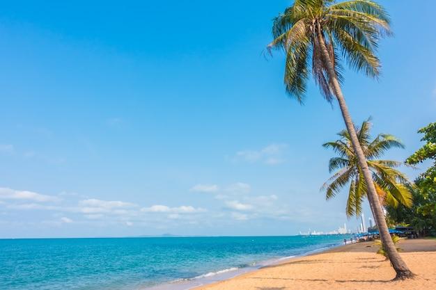 Paysage tropical sable ciel nature