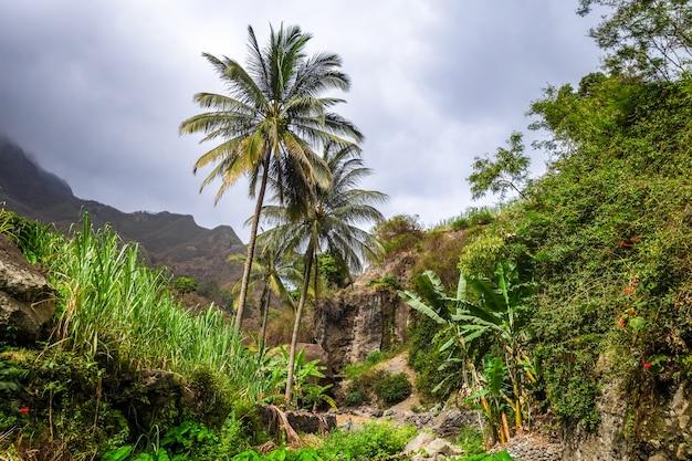 Paysage de la vallée de la paul dans l'île de santo antao, cap-vert