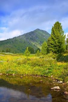Paysage vertical avec le lac des montagnes