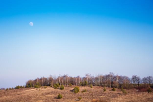 Paysage avec vue sur la forêt et le ciel avec la lune