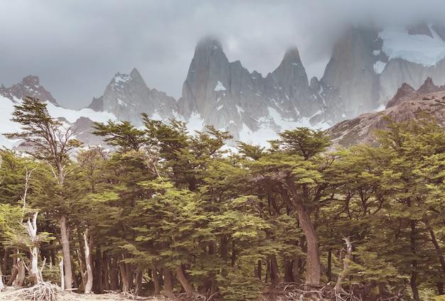 Paysages de patagonie dans le sud de l'argentine