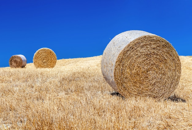 Paysages ruraux de la toscane, en italie. balles et meules de foin sur les collines et les champs.