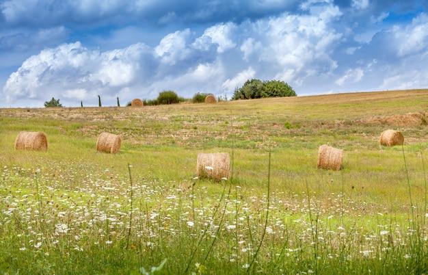 Paysages ruraux de la toscane, en italie. des balles et des meules de foin dans les champs.