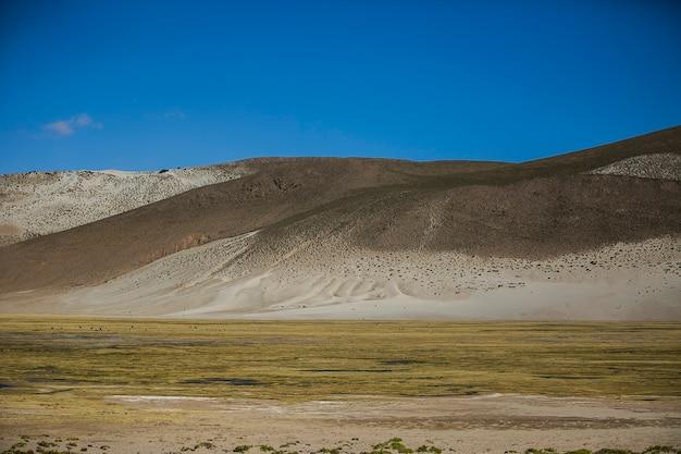 Paysages secs de la cordillera real, andes, bolivie