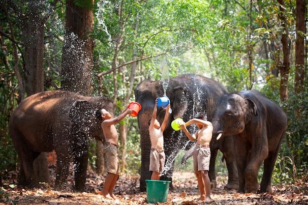 Paysans et culture asiatique des éléphants