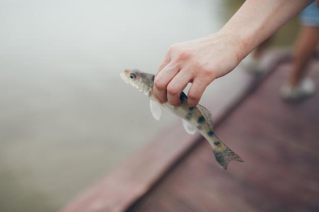 Pêche. poisson dans les mains en gros plan.