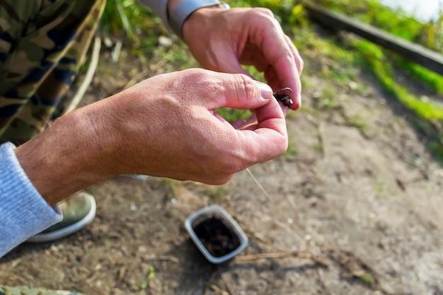 Pêcheur enfilant un ver de terre sur un hameçon. appât en mains