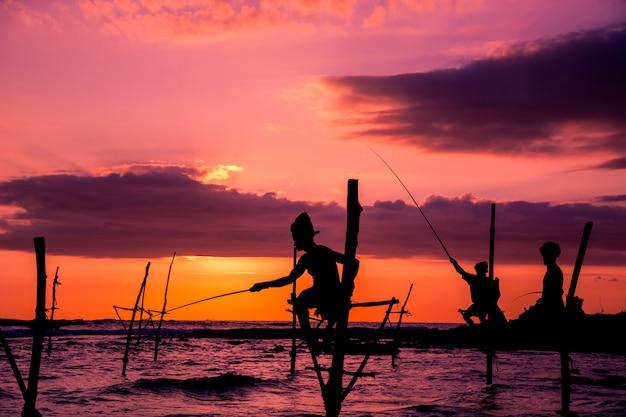 Pêcheur traditionnel sur pilotis au sri lanka