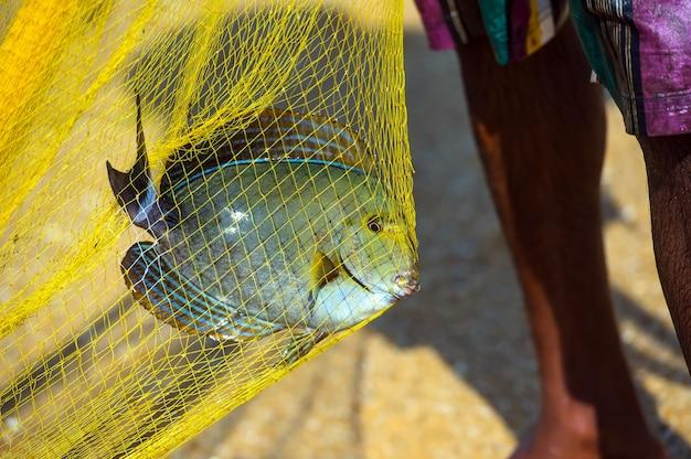 Pêcheurs sur la côte océanique du sri lanka