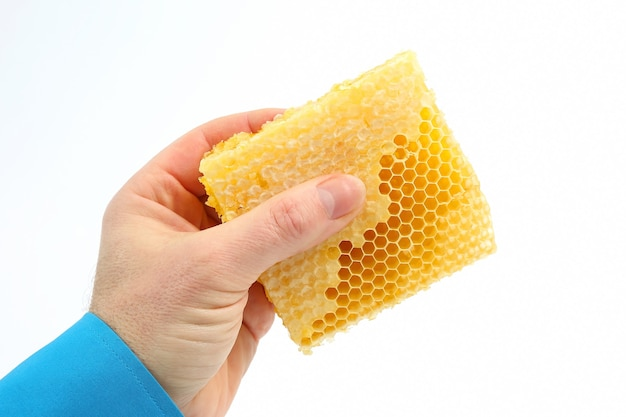 Peigne à miel dans la main sur blanc