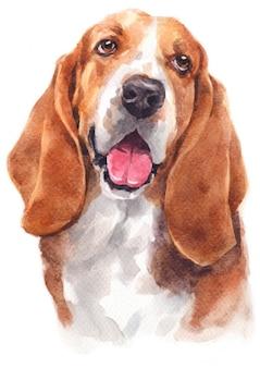 Peinture à l'aquarelle de basset hound