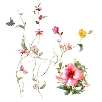 Peinture à l'aquarelle de feuilles et de fleurs, sur blanc