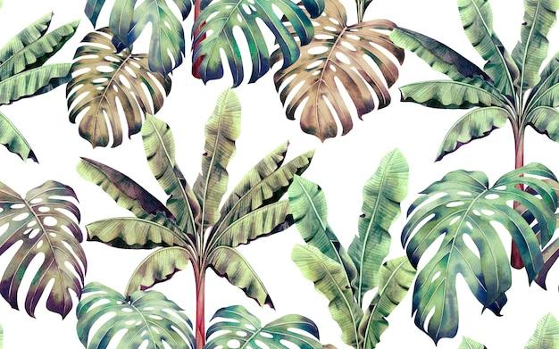 Peinture à l'aquarelle tropicale colorée feuilles de fond transparente.