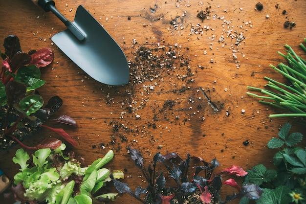 Pelle de potager avec semis et terre éparpillés sur socle en bois mode de vie durable