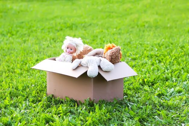 Peluches pour don dans la boîte en carton ouverte sur l'herbe verte à l'extérieur.