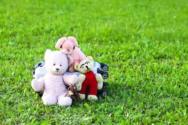 Peluches et sac de voyage pour don dans la boîte en carton ouverte sur l'herbe verte à l'extérieur au soleil.