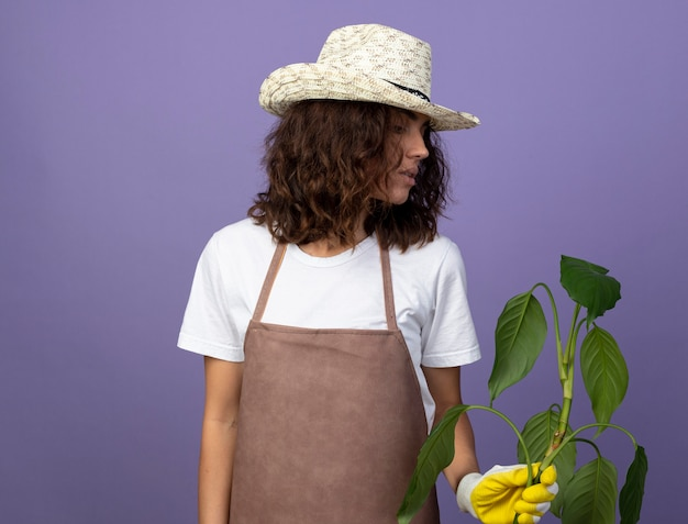 Pensive jeune jardinière en uniforme portant chapeau de jardinage et gants tenant et regardant la plante isolée sur violet