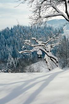 Pente de neige avec une mangeoire à oiseaux sur un arbre beau paysage rural d'hiver village ou ferme journée ensoleillée