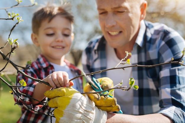 Père concentré portant des gants en caoutchouc jaune enseignant à son charmant fils comment prendre soin des arbres en les élaguant