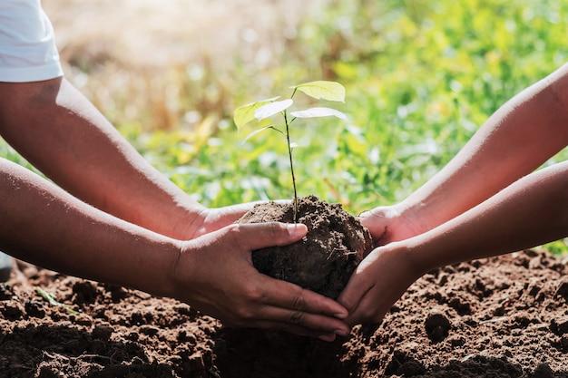 Père et enfants aidant à planter un petit arbre dans un jardin