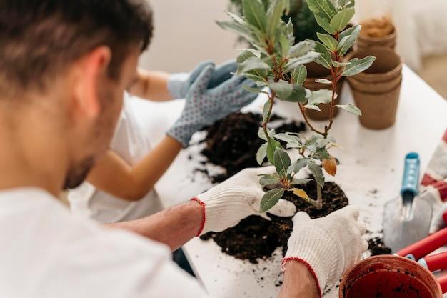 Père et fils plantant ensemble dans des pots à la maison