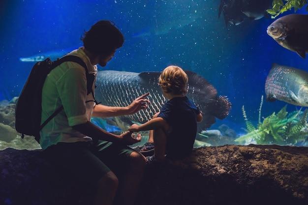 Père et fils regardent les poissons dans l'océanarium
