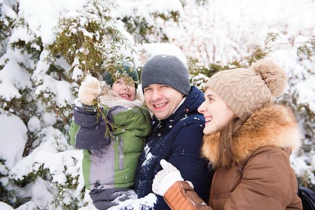 Père et mère se promène avec petit fils dans une forêt en hiver.