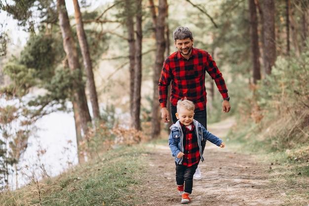Père avec petit fils dans les bois