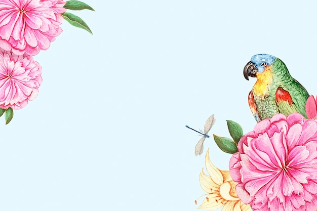 Perroquets vintage et frontière concept nature