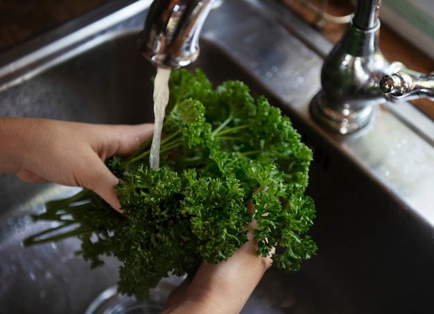 Persil sous l'idée de recette de la photographie alimentaire de l'eau courante