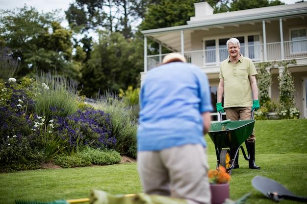 Personne agee, couple, jardinage, plante