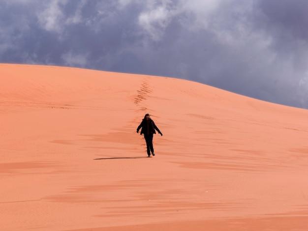 Personne, marche, dans, désert, corail rose, dunes sable, parc état, utah, usa